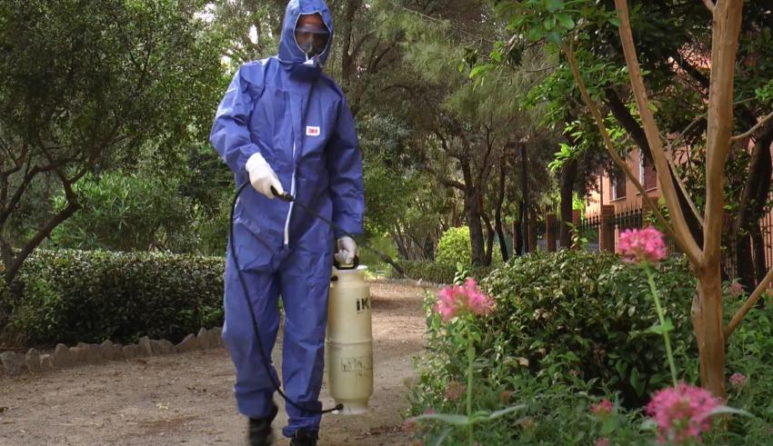 Torrent incrementa en un 80% el presupuesto para combatir el mosquito tigre