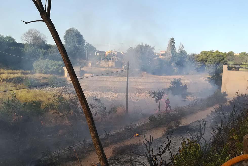 El PP pide que se recupere la zona quemada en el Azud del Pantano