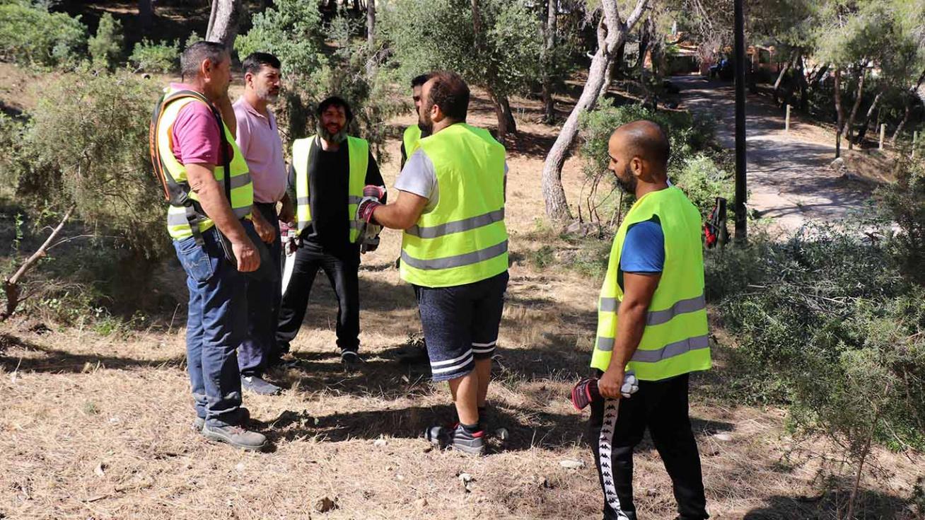 Comencen els treballs de protecció del patrimoni forestal