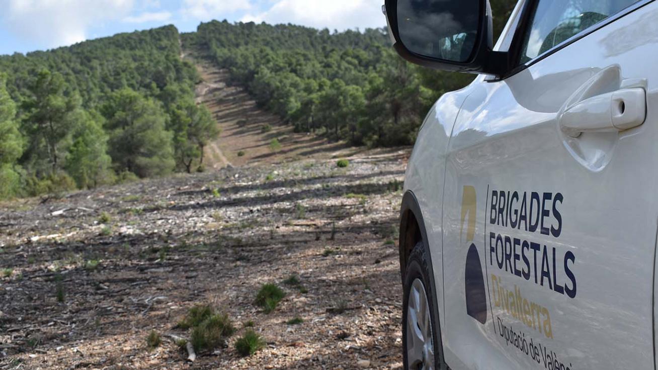 El PP demana que l'Ajuntament sol·licite Brigades Forestals de la Diputació de València