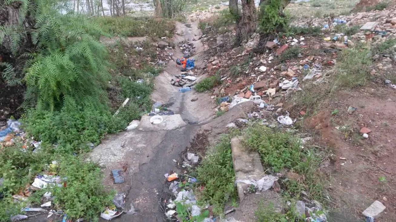 Ciudadanos exigeix neteja i fumigació immediata de la zona del barranc