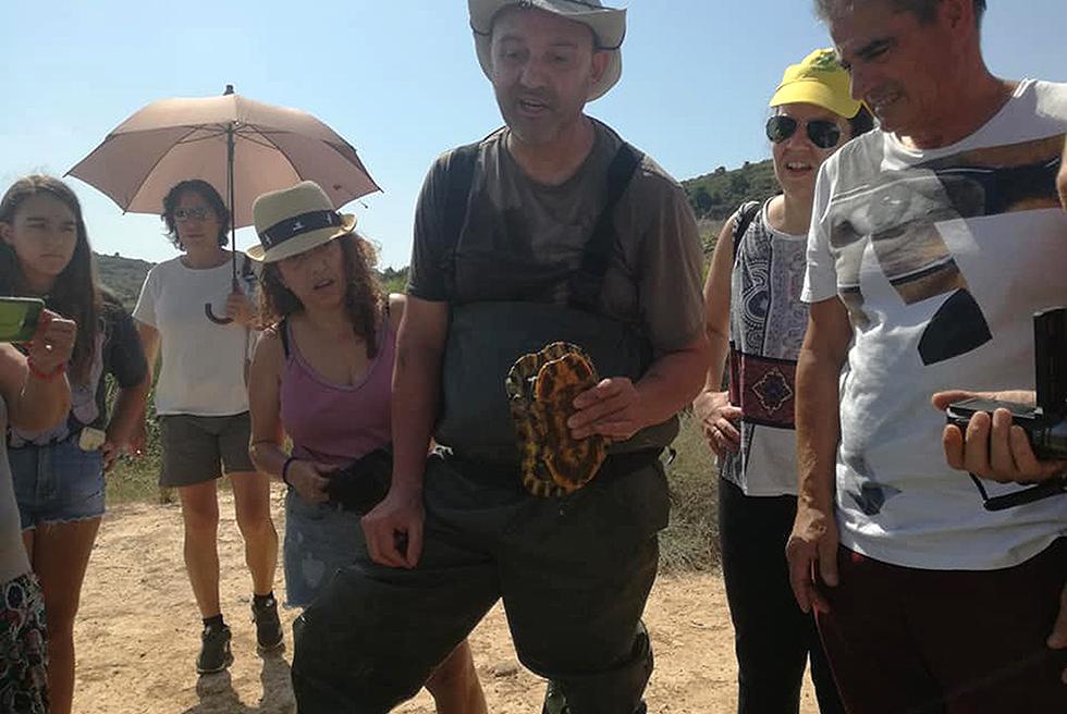 Censen 60 tortugues autòctones en el Barranc de l'Horteta