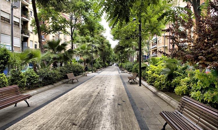 VOX demana millorar la visibilitat en les rotondes amb jardí