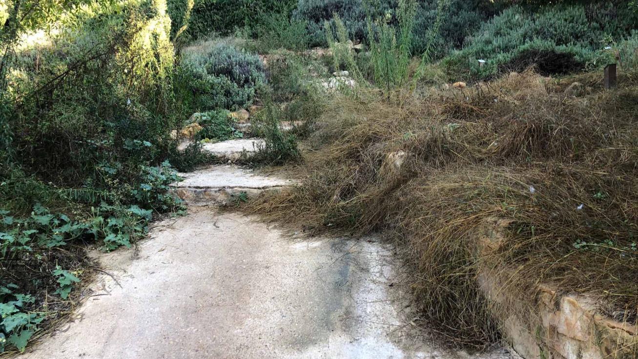 El PP denúncia l'abandó de l'Arborètum coincidint amb els premis Viles en Flor